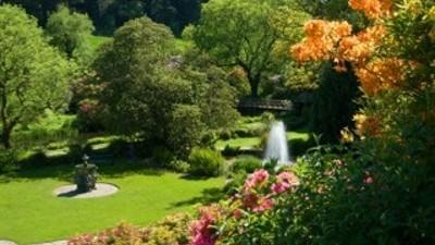 Lisselan Estate & Golf Club