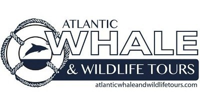 Atlantic Whale & Wildlife Tours
